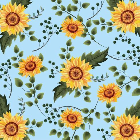 exotische Sonnenblumenanlagen mit Niederlassungshintergrund vektor