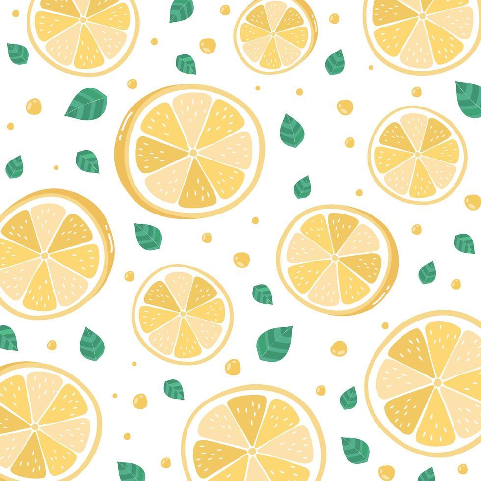 citronskivor mönster på vitt vektor