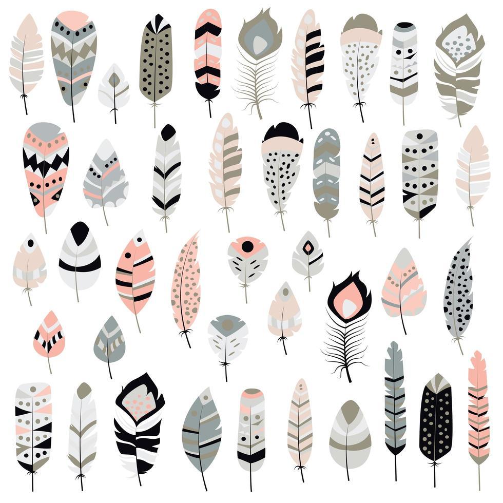 Sammlung gezeichnete Federn Boho Stammes- Hand vektor