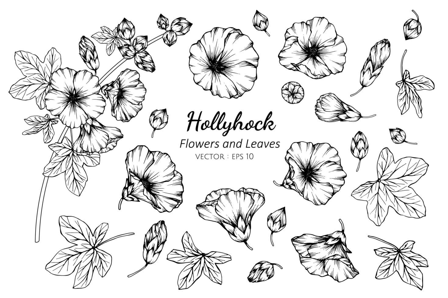 samling av hollyhock blommor och blad vektor