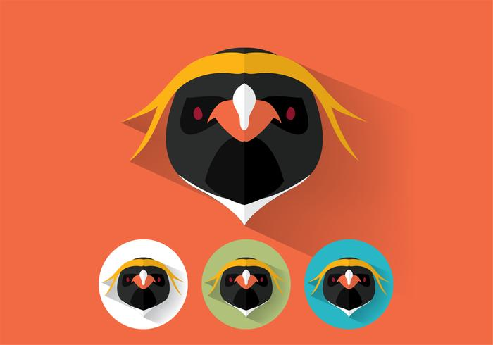 Pinguin Portraits Vektor Set Zwei
