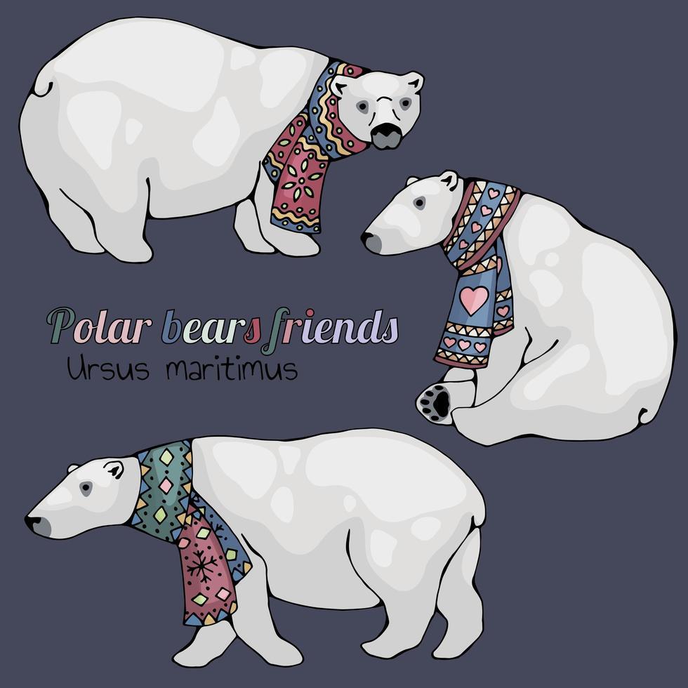 isbjörnar i halsdukuppsättning vektor