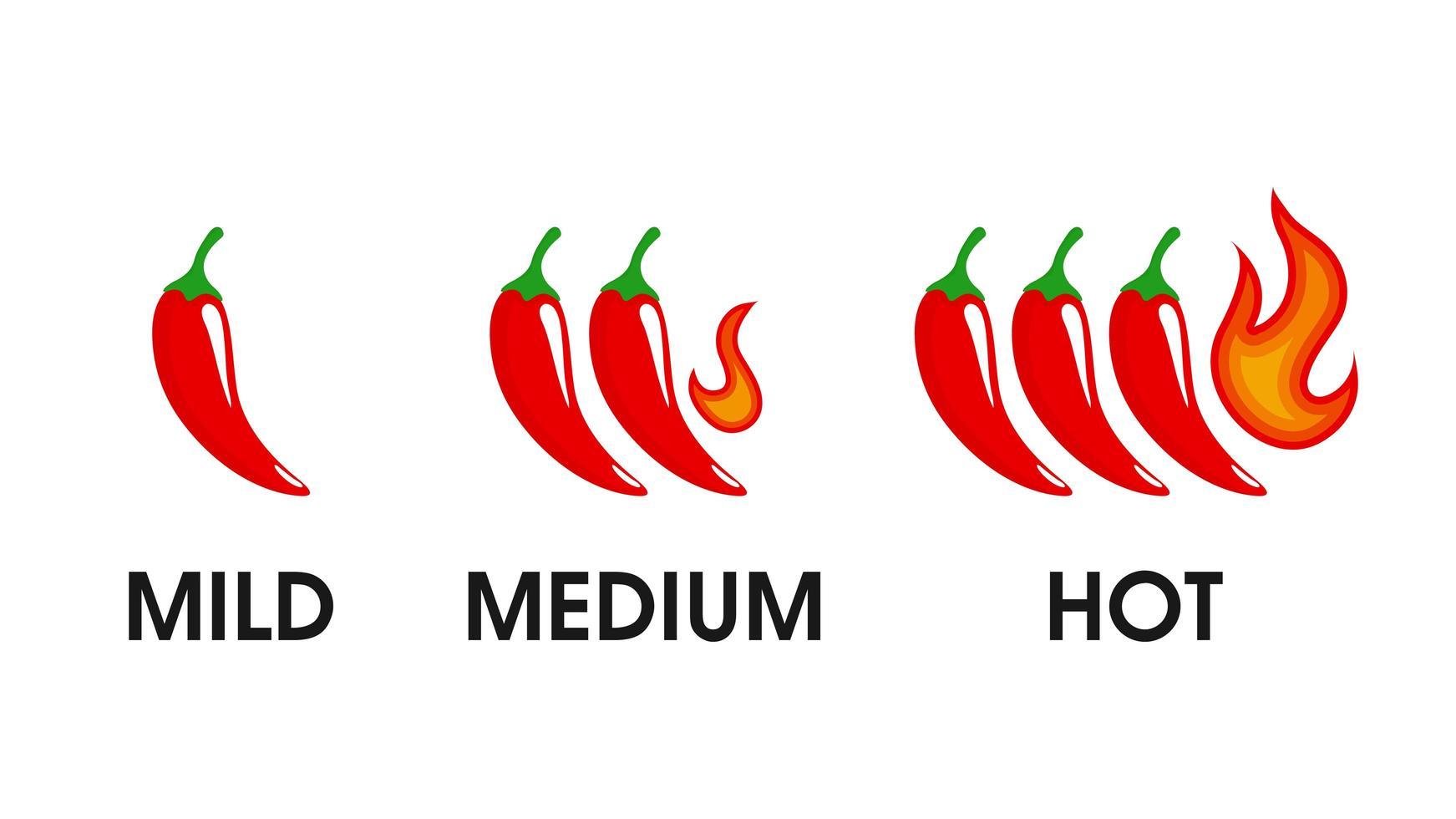 het och kryddig ikon vektor