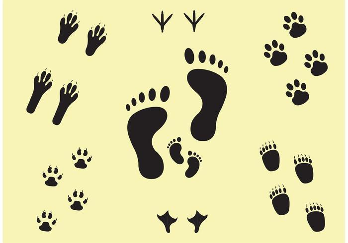 Nächste Schritte Footprint Vector Set