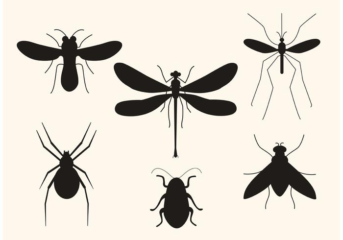 Vektor Insekt Silhouetten