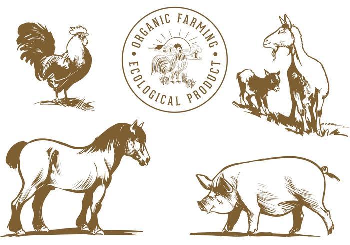 Freie Farm Tiere Vektor Pack