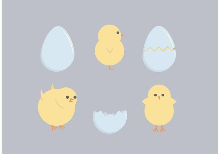 Påsk Chicks Free Vectors