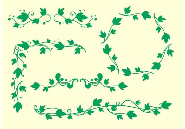 Simple Ivy Vine Vectors