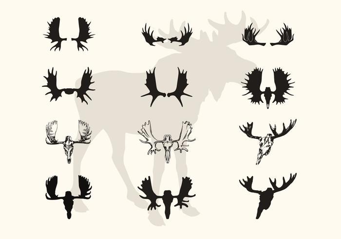 Moose Horns und Schädel Vektor Silhouetten