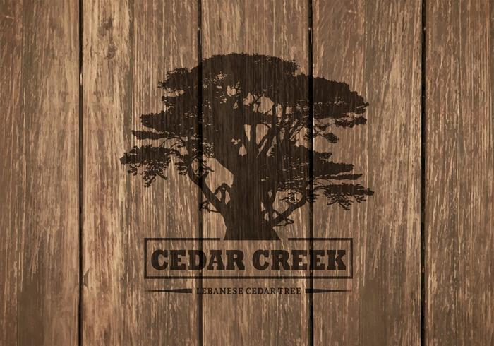 Gratis Cedar Tree Silhouette På Trä Bakgrund vektor