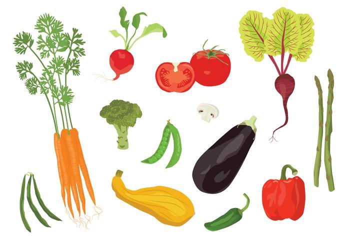 Vektor veggies