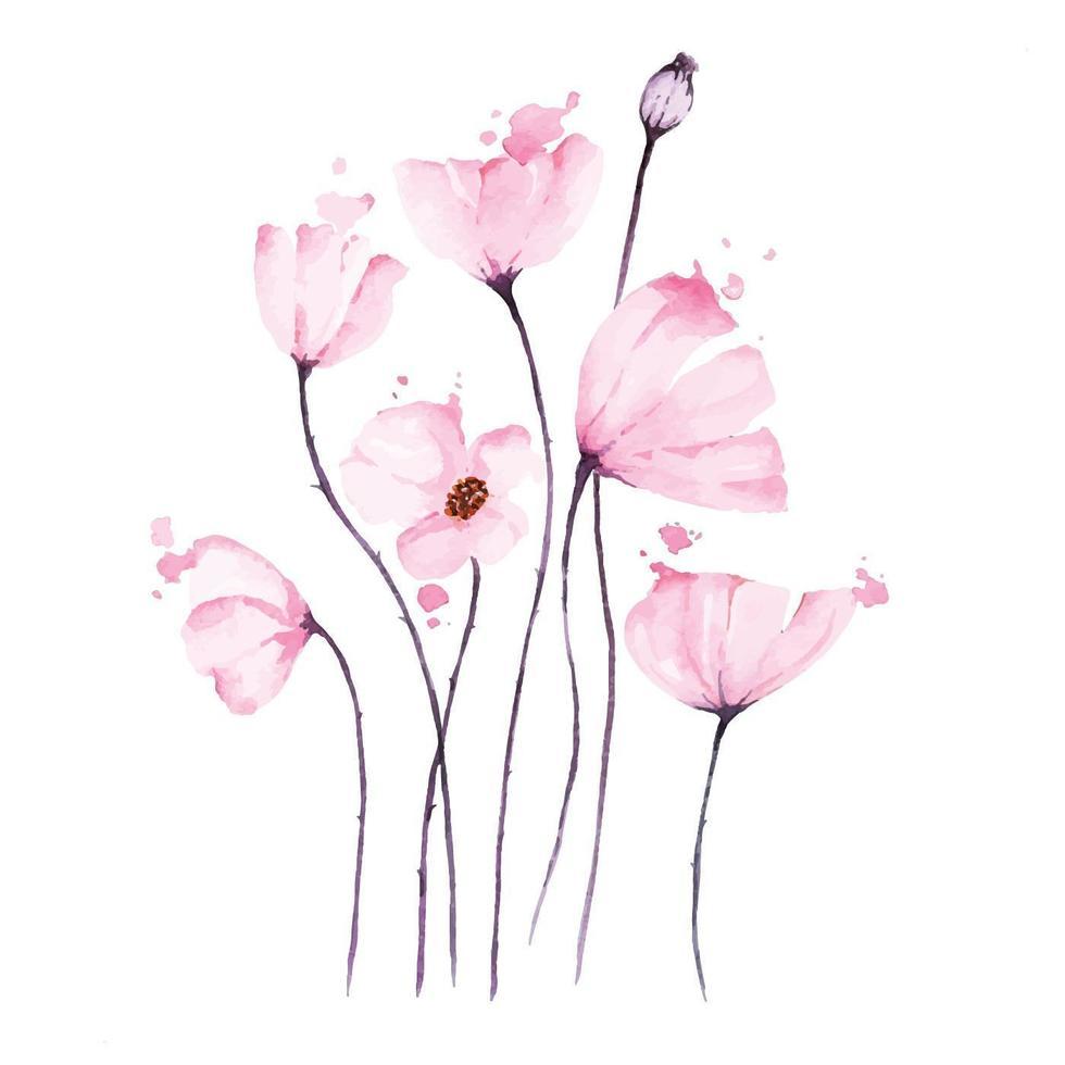 bukett med rosa vallmo akvarell vektor