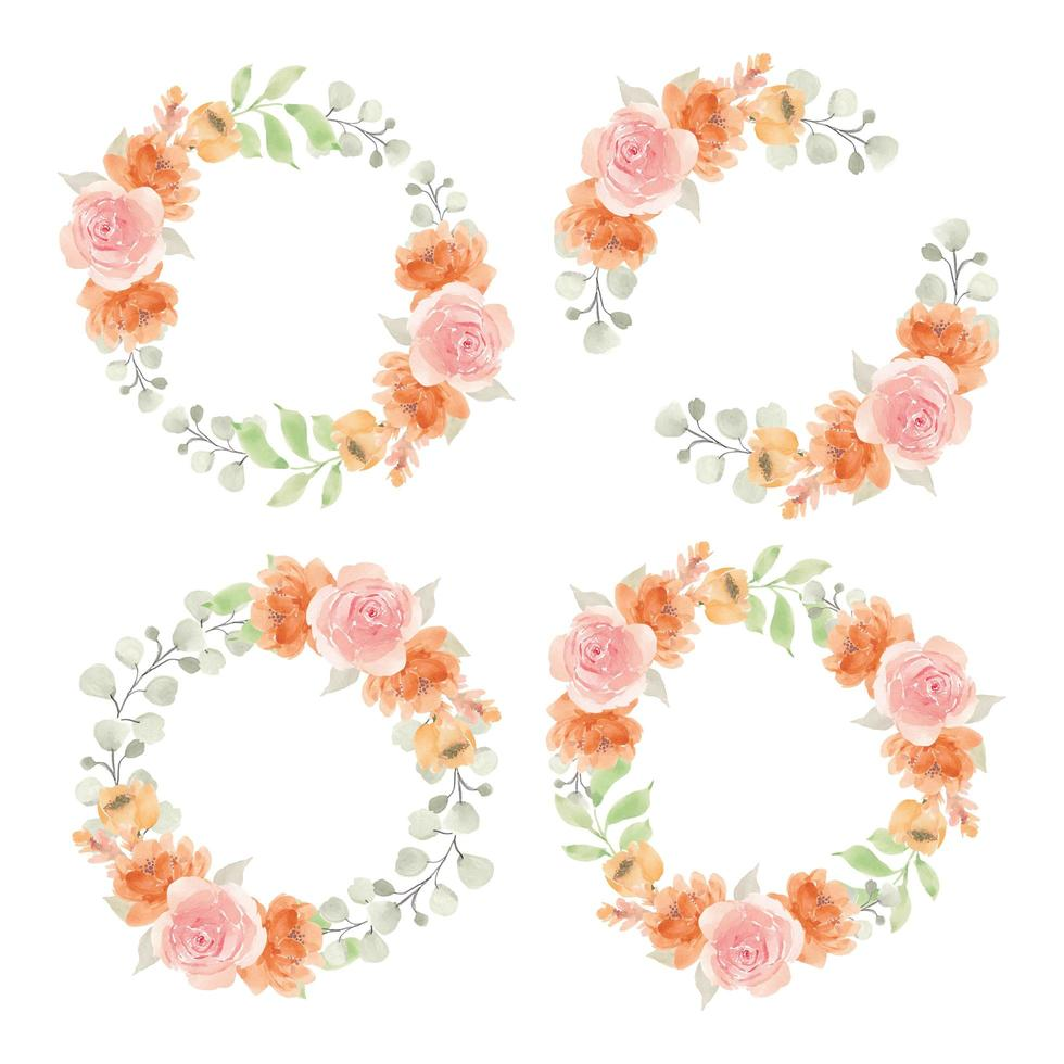 Aquarell rosa und orange Rosenkreisrahmen vektor