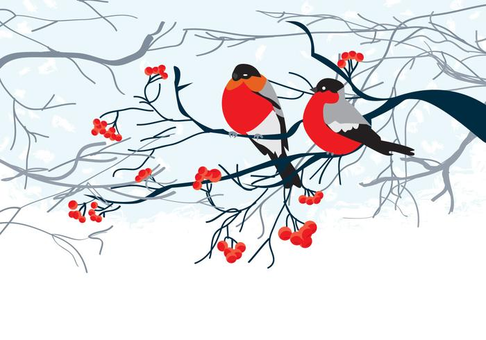 Karte mit Vögeln auf Zweig vektor