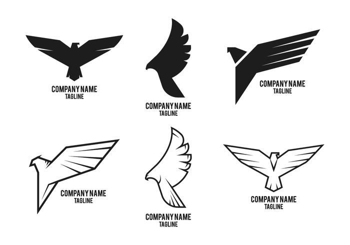 Hawk logo företag vektor