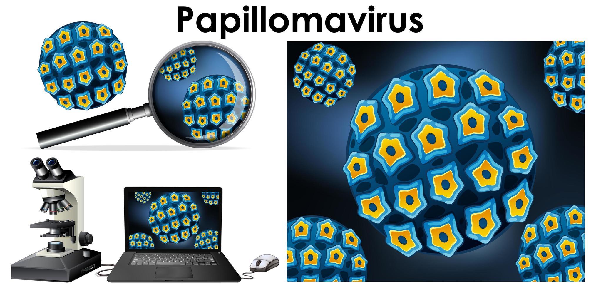 Papillomavirus-Virus und Lupe vektor