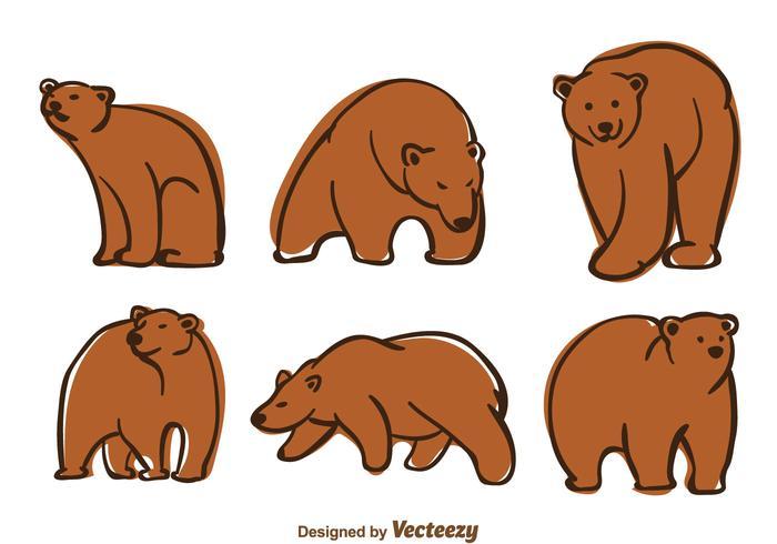 Björnvektor vektor