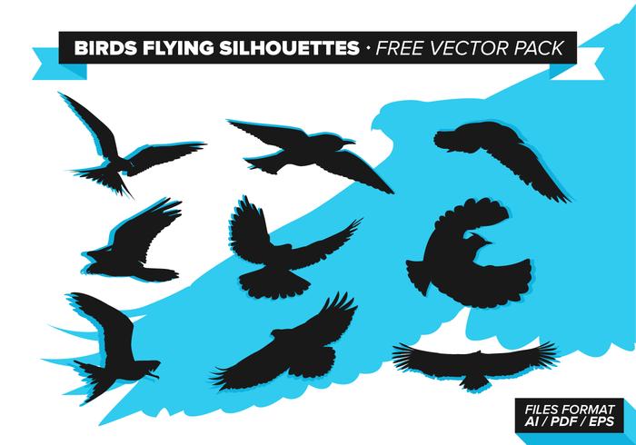 Vögel Fliegen Silhouetten Free Vector Pack