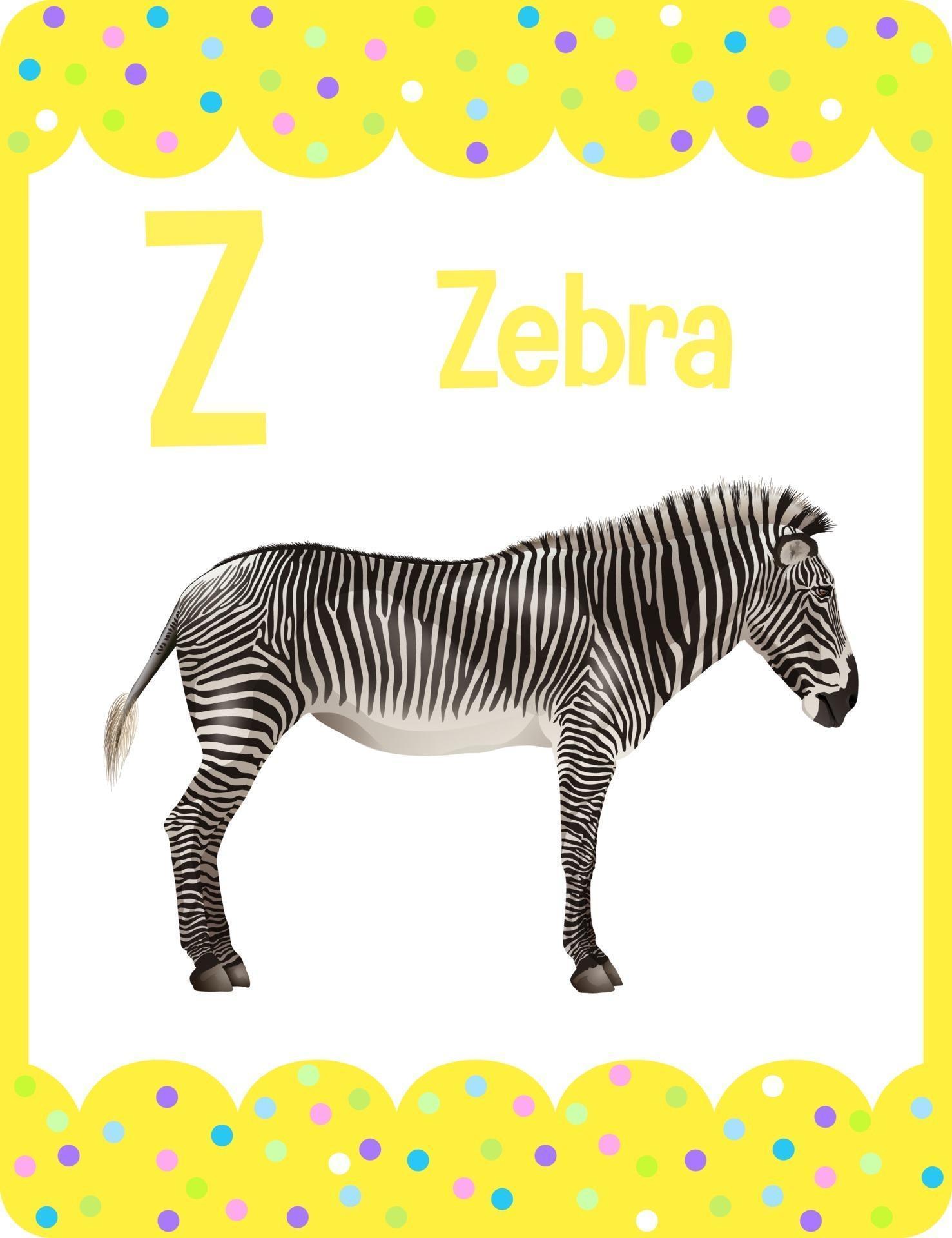 alphabet flashcard mit buchstaben z für zebra 2763823