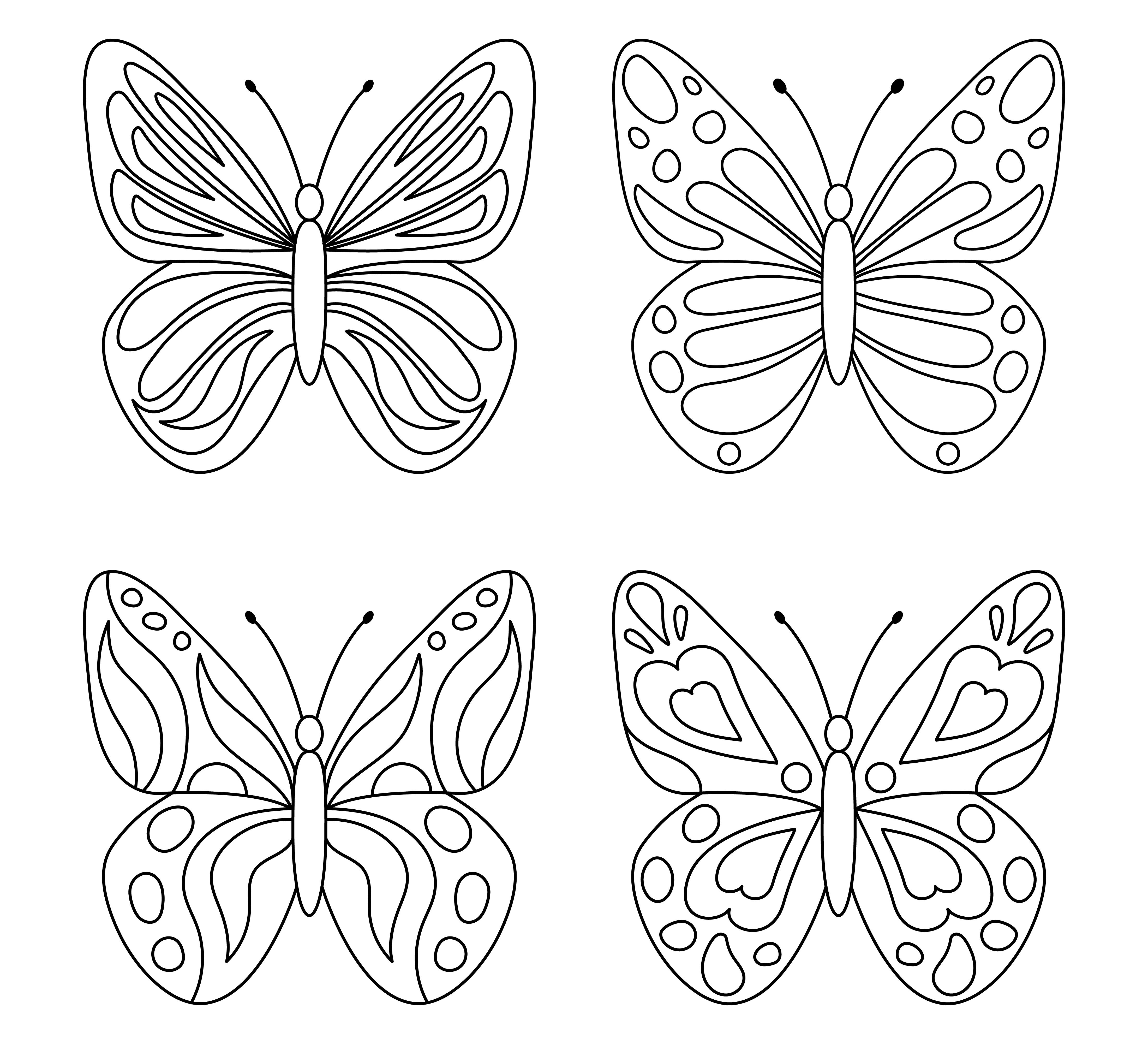 Ausmalen schmetterling zum 39 Schmetterling
