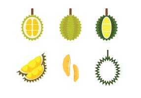Kostenlos Durian Vector