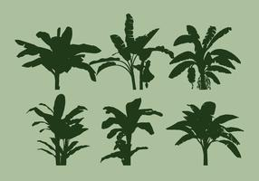 Banan träd vektor