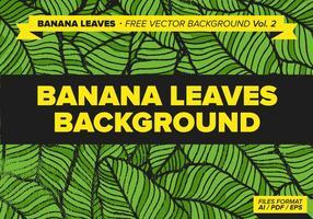 Bananlöv Gratis Vector Bakgrund Vol. 2