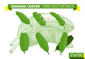 Bananblad lämnar gratis vektorpaket