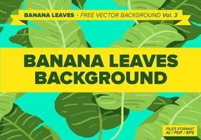 Bananlöv Gratis Vector Bakgrund Vol. 3