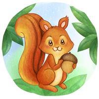 Aquarell Eichhörnchen hält Eichel