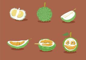 Durian Vektoren
