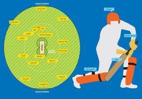 Cricketfeld und Ausrüstung vektor