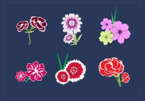 Nelken-Blumenstrauß-Vektoren vektor