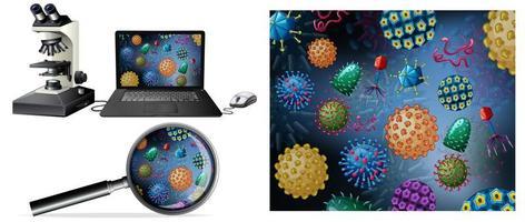 närbild av virus på datorskärmen