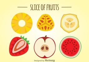 Skiva av frukter vektor