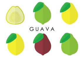 Guava varianter vektorer