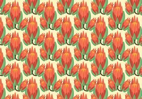 Gratis Protea Pattern Vector