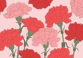 Carnation Vector Bakgrund