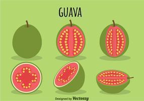 Guaven-Vektor vektor