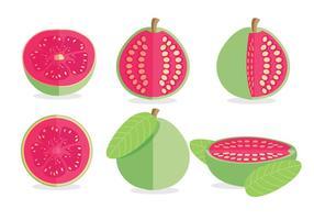 Guave-Vektor vektor