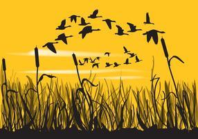 Reeds och gäss Silhouettes vektor