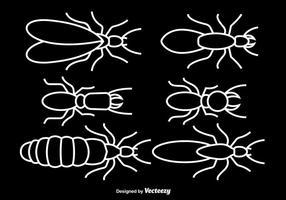 White Strich Termiten