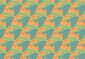 Kostenlose Protea Vektor Muster Illustration