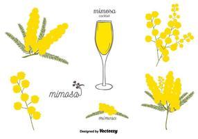 Freien Mimosen-Vektor-Set vektor