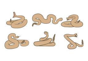 Klapperschlangen-Vektor vektor
