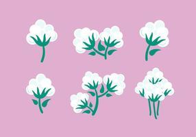 Bomull Växt Vector