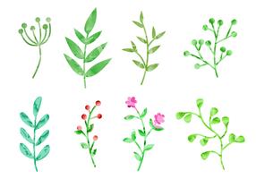 Gratis vattenfärg Växter Vector