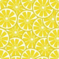 frisches Zitronenscheibenmuster vektor