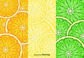 Fruktskivor Mönstervektor vektor