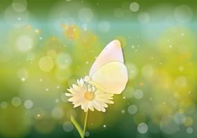 Schmetterling Hijau Hintergrund Vektor